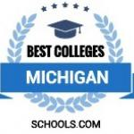 Graphic of best colleges michigan
